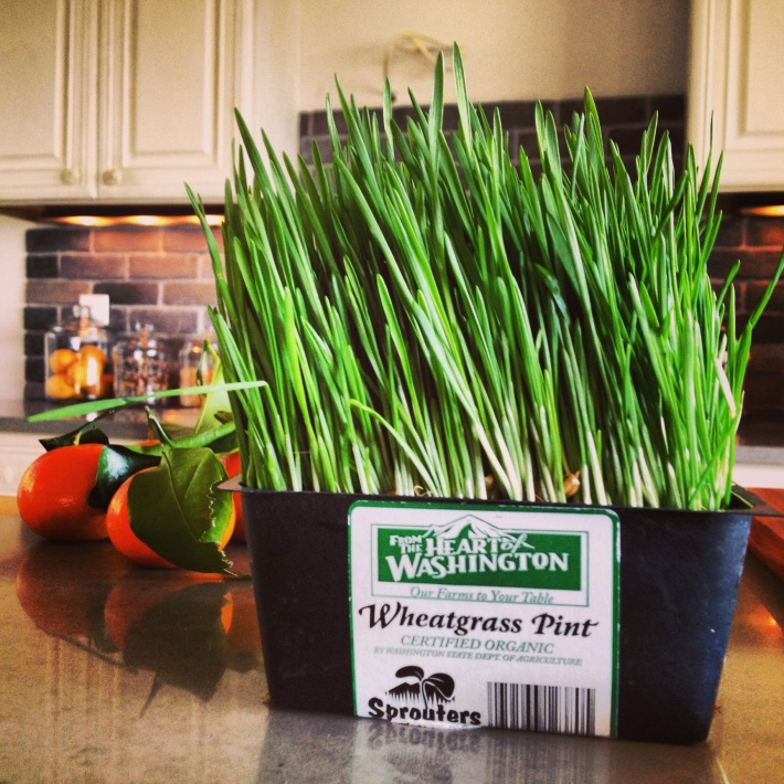 Whole foods wheatgrass juice